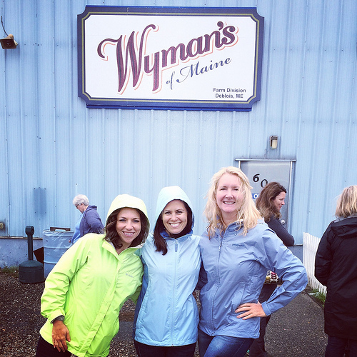 Wyman's of Maine via Lizshealthytable.com