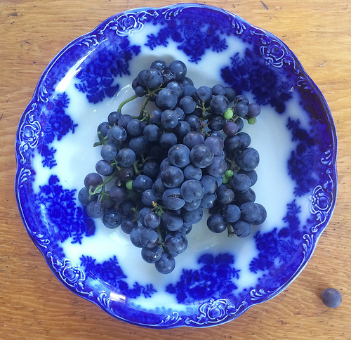 Concord Grapes for a healthy snack via Lizshealthytable.com