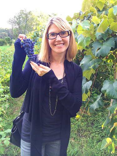 Welch's dietitian picks Concord grapes at Meadow Mist Farm via Lizshealthytable.com
