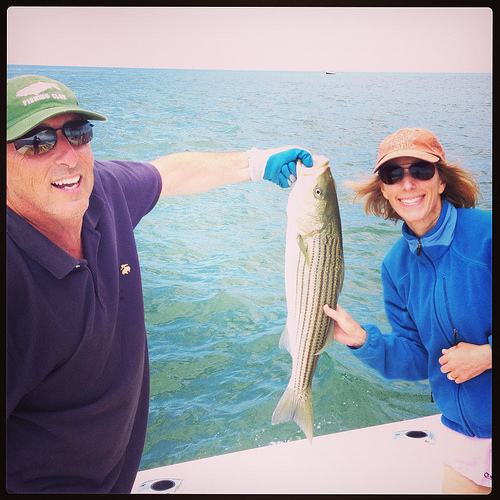 Fishing for striped bass on Nantucket via Lizshealthytable.com