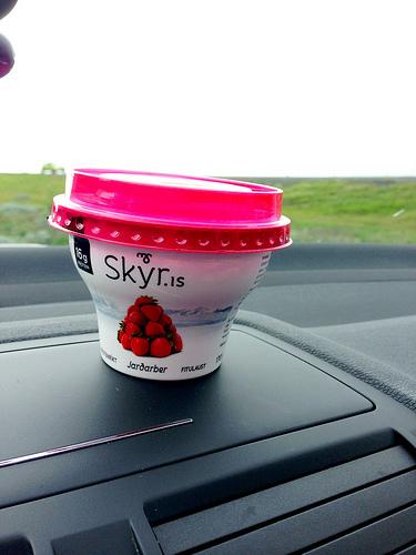 Skyr Yogurt in Iceland via Lizshealthytable.com
